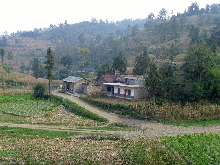 比道角村是云南省昭通市镇雄县以古彝族苗族乡的一个行政村,地处以古