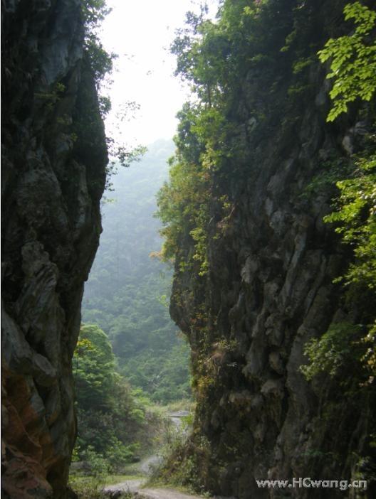 壁纸 大峡谷 风景 528_702 竖版 竖屏 手机