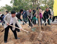 4884,三月十二植树节(原创) - 春风化雨 - 春风化雨的博客