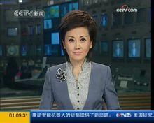 中央电视台资讯_中央电视台新闻频道_360百科