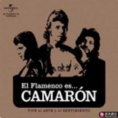 flamenco es... camaron