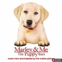 marley & me: the puppy years(music from and inspired by the motion picture)