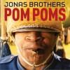 pom poms(single)